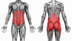 core-muscle-e1430224730768